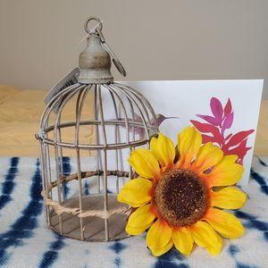 NWT Iron Birdcage Tabletop Decor